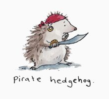 Pirate Hedgehog by Bethan Matthews
