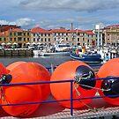 Victoria Dock Hobart by TonyCrehan