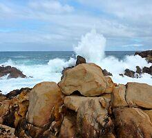 wild rocks by SUBI