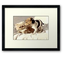 What on EARTH makes you think I want to be your friend? Framed Print