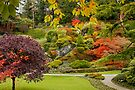 Autumn in Butchart Gardens,  by AnnDixon