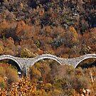 Kalogeriko (Plakidas) bridge - Zagori by Hercules Milas