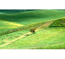 Alone in a Tuscan Valley-Siena Photographic Print