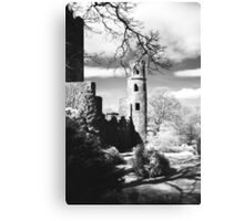 Blarney Castle, Ireland Black and White Canvas Print