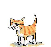 Pirate Cat by Bethan Matthews