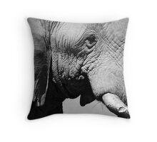 Life Lines - Etosha National Park Throw Pillow