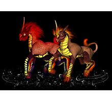 Dragon Horses .. December Photographic Print