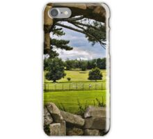 The View Beyond iPhone Case/Skin
