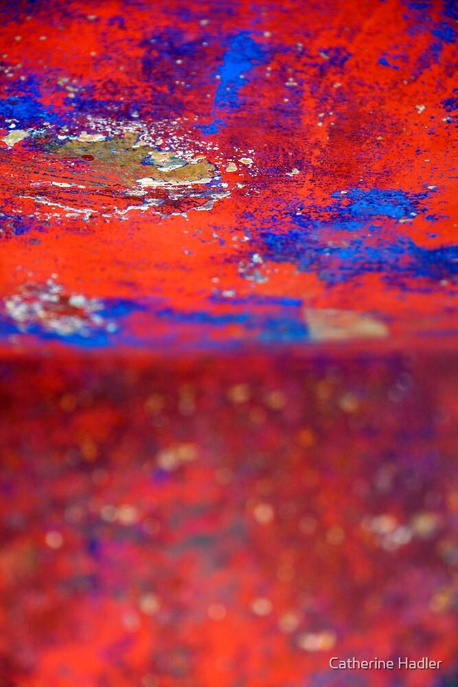 Red Blue wonderland by Catherine Hadler