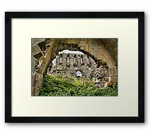 The Newness Has worn Off Framed Print