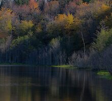 Fall Reflections - An Upstate NY Beaver Pond by Christopher Hall