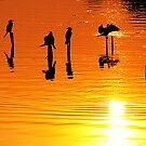 The Golden Hour by Mukesh Srivastava