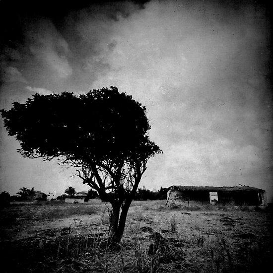 abandoned tree I by Victor Bezrukov