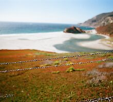 Barbed coast by Bredette