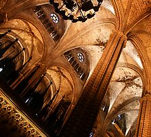 Barcelona Cathedral by Nicole Shea