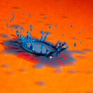 Splash of Colour 18 by alanrigg