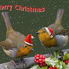 Bobbin' Robins by Krys Bailey