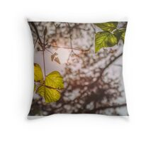 Look to the sun Throw Pillow