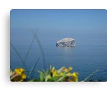 Bass Rock on a summers day, North Berwick, Scotland Canvas Print