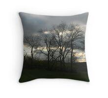 November trees Throw Pillow