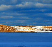 Winter at Silver Lake Sand Dunes by Debbie  Maglothin