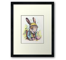 March Hare in May Framed Print
