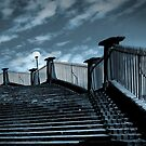 steps from the harbour by carol brandt