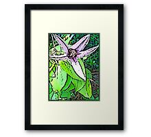 Cartoon Clematis Framed Print