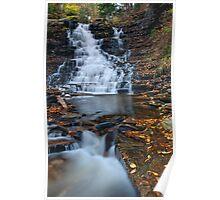 F.L. Ricketts Falls, Ricketts Glen State Park Poster