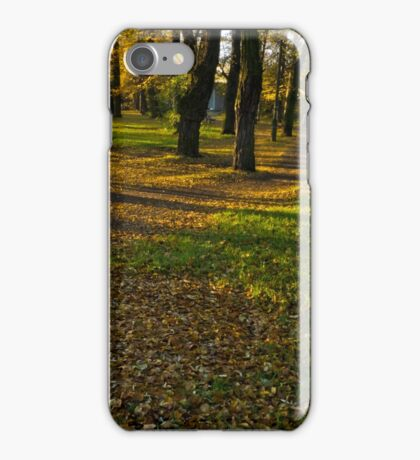 peace and quiet autumn morning in the park - Skoczów, Poland iPhone Case/Skin
