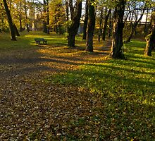 peace and quiet autumn morning in the park - Skoczów, Poland by KondzioK