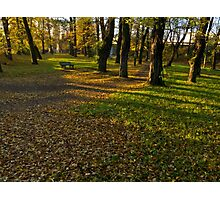peace and quiet autumn morning in the park - Skoczów, Poland Photographic Print