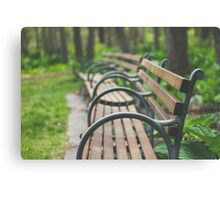 Garden Benches Canvas Print