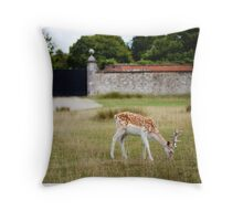 Male Deer Grazing Throw Pillow