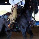Blue Roan Cowhorse by Emily Peak