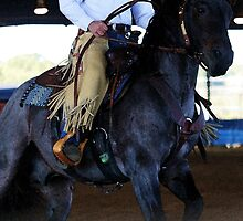 Blue Roan Cowhorse by Emily Peak