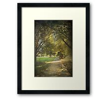 Recollections Framed Print