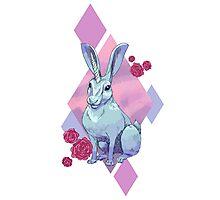 Uni-hare Photographic Print