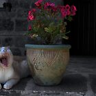 Yawning by Dulcina