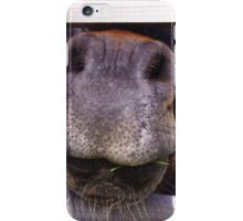 Horse's nose :) iPhone Case/Skin
