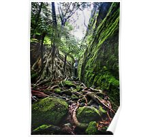 Slots Within Gorges, Carnarvon Gorge, QLD Poster