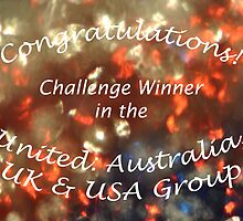 United Challenge Banner #2 by MissyD