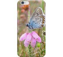 Little Blue on Heather iPhone Case/Skin