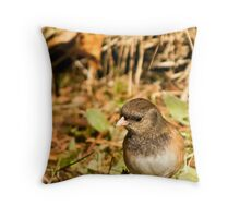 Dark Eyed Junco ~ Oregon Race Throw Pillow
