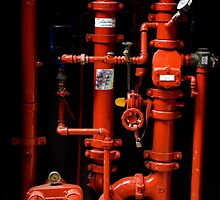 Fire Hydrant - Brisbane by Jordan Miscamble
