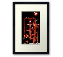 Fire Hydrant - Brisbane Framed Print