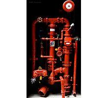 Fire Hydrant - Brisbane Photographic Print