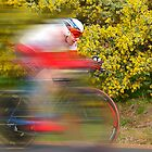 Tasmanian Cycling  by Clive Roper