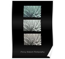 Grass Tree Abstract Poster