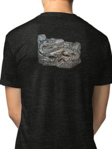 Be Aware Of The Dragon Tri-blend T-Shirt